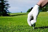 Golf Tee Hand — Stock Photo