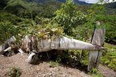 Small Aircraft Crash — Stock Photo