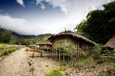 Village Hut — Stock Photo