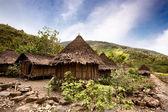 Traditional Village — Stock Photo