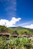 Traditional Mountain Village — Stock Photo
