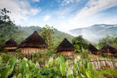 Traditional Hut — Stock Photo