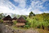 Traditional Hut — Photo