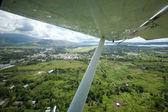 Tropical Flight — Stock Photo
