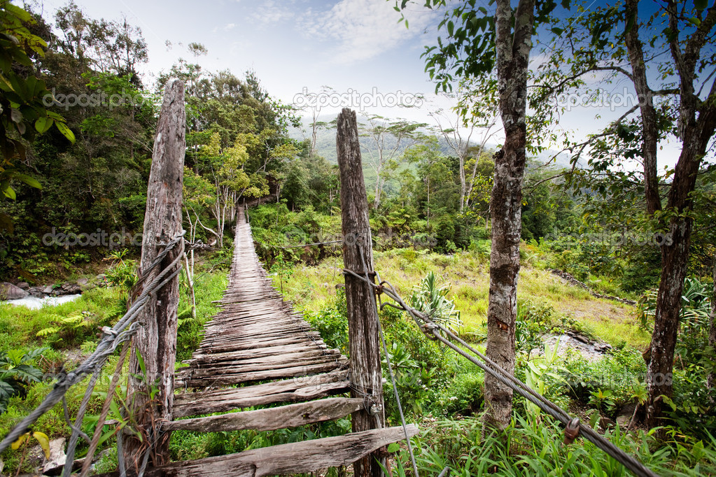 An old narrow hanging bridge — Stock Photo #5731333
