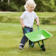 Stock Photo: Boy pushing a wheelbarrow