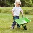Boy pushing a wheelbarrow — Stock Photo