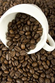 Coffee beans are scattered from a white cup — Stock Photo
