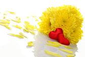 Chrysanthèmes jaunes avec deux coeurs rouges — Photo