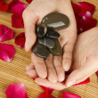 Hands on rose petals — Stock Photo #6116105