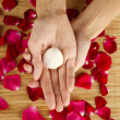 Stock Photo: Hands on rose petals