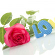 "Red Rose and the text of ""LOVE"" - Stock Photo"