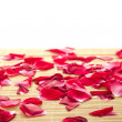 Royalty-Free Stock Photo: Red rose and petals