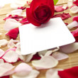 Card and roses — Stockfoto
