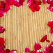 Stock Photo: Rose Petal Frame