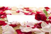 Cartão e rosas — Foto Stock
