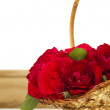 Basket of roses — Stock Photo #6209395