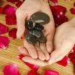 Hands on rose petals — Stock Photo #6216068