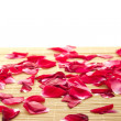 Stock Photo: Red rose and petals