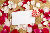 Card and rose petals — Stock fotografie