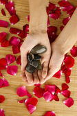 Ręce na płatki róż — Zdjęcie stockowe