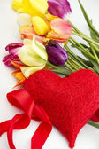 Tulips and red heart — Stock Photo