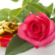 Red Rose, gift box - Stock Photo