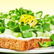 Spring snacks - light open faced sandwiches — Stock Photo