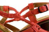 Eleganckie buty kobiece — Zdjęcie stockowe