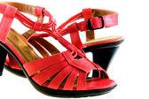 Chaussures femmes élégantes — Photo
