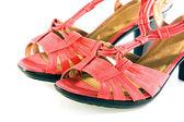 Elegantes zapatos femeninos — Foto de Stock