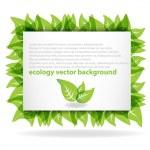 Fresh green background — Stock Vector #5865036