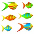 Colorful fish. - Stock Vector