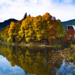 Stock Photo: Autumn in Bulgaria