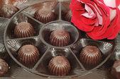 Rose and chocolate — Stock Photo