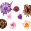 Stock Photo: Hair band flowers