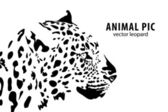 Leopardo — Vector de stock