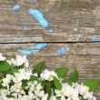 Spring flowers on old wooden background — Stock Photo #5681892