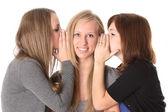 Girls talking isolated on white — Stock Photo