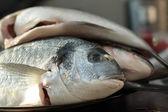 Prepared Fish in Restaurant Kitchen — Stock Photo
