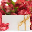 Empty White Card and Red Flowers — Stock Photo