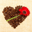 Heart - coffee and red flower on background — Stock Photo