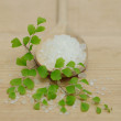Spa Concept - Bath Salt and Green Leaves on Background — Stock Photo #6246201