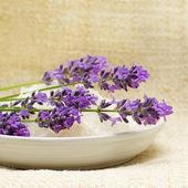 Lavender on Spa Bath Salt and Linen Background — Stock Photo