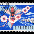 Honey bee on flower vintage postage stamp - Stock Photo