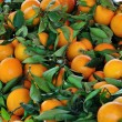 Oranges fruit background — Stok fotoğraf