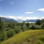Trails in Alaska — Stock Photo #5817712
