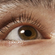 Brown man's eye closeup — Stock Photo