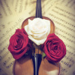 Old violin with musical notes and roses — Stock Photo