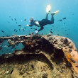 Shipwreck and diver - Stockfoto